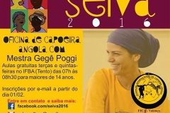 ocupaçao capoeira