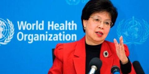 Margareth Chan vai acompanhar a epidemia do vírus Zika no Brasil