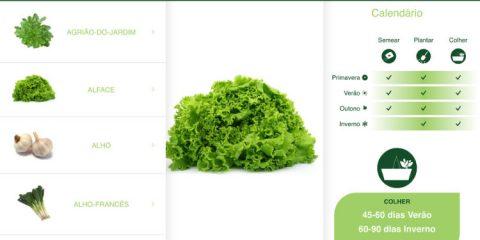 aplicativo-gratuito-horta-casa-plantit