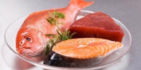 513533-comer-peixe-melhora-a-leitura-das-criancas-diz-pesquisa