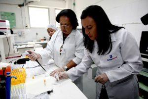 Teste rápido da dengue