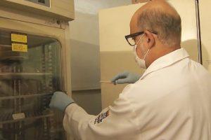 Doença da urina preta causa insuficiência renal em boa parte dos casos - Foto - Reprodução-TV Bahia