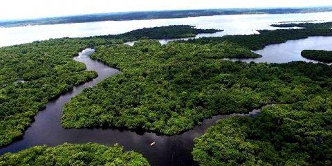 Rio-amazonas